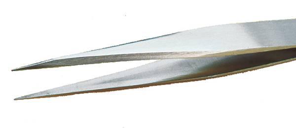 Brucelle pointe fine large et solide RR-SA